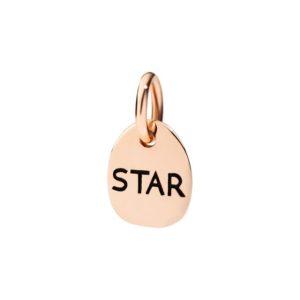 tag.star.my light shines bright for the world to see i'm a star.oro rosa e smalto
